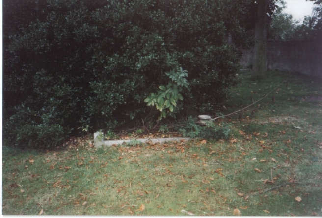 William Chiddicks Grave