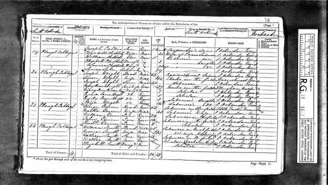 Elizabeth Lake Census Return 1871