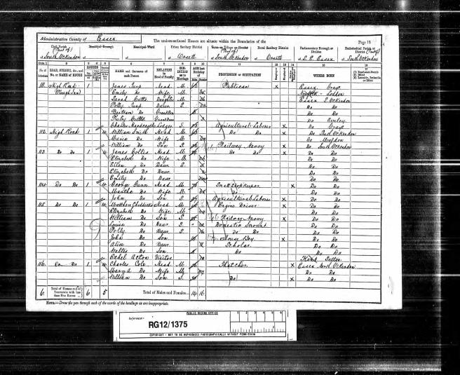 Matthew Chiddicks 1891 Census